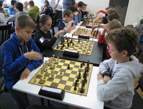 Międzynarodowe warsztaty szachowe w Szczecinie